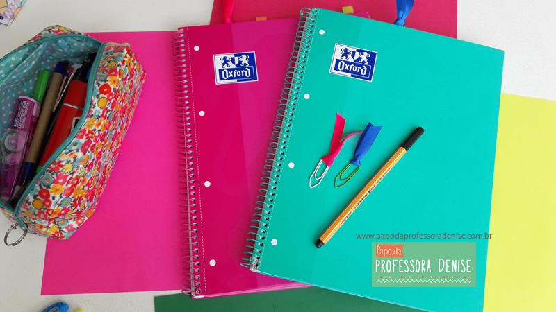 Meus segredos para montar um planner de professora 2